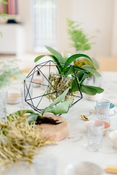 Orb on table with plant