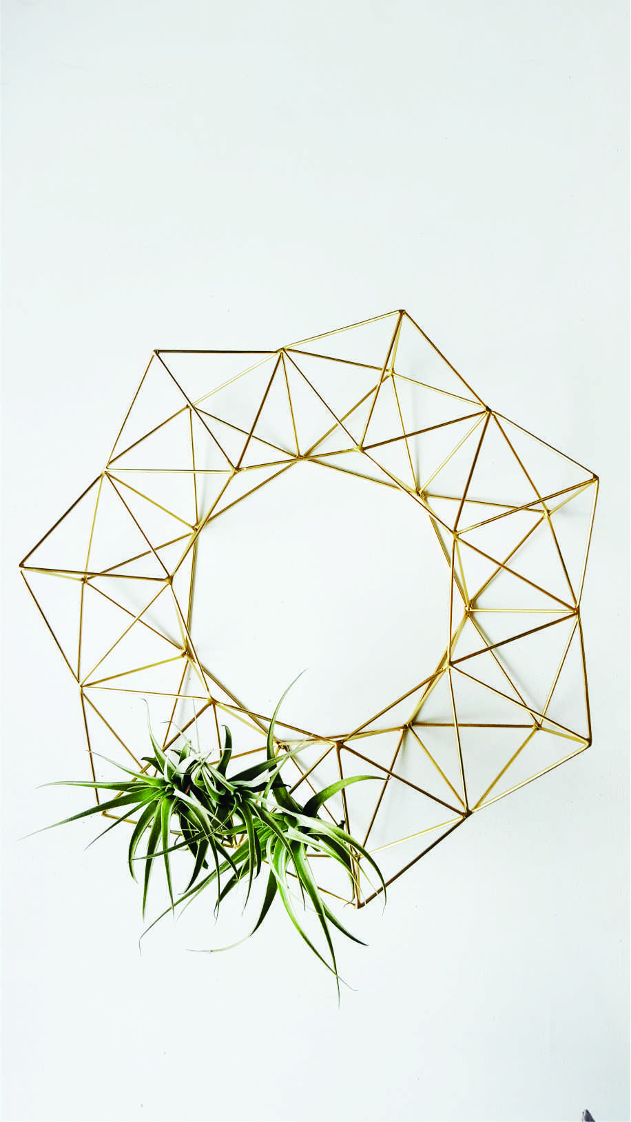Geometric wreath I with plant