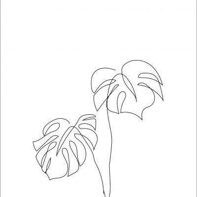 botanical 6